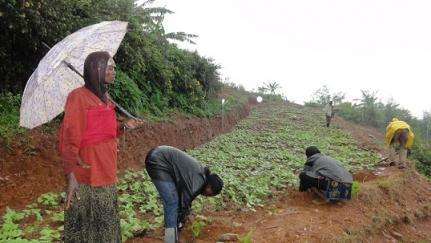 Gardens for Health, Rwanda, malnutrition, food, Africa